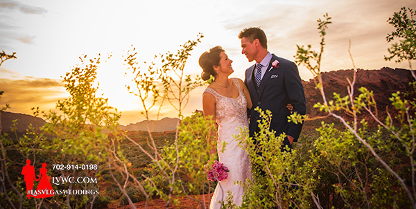 Valley of Fire Red Rocks Wedding
